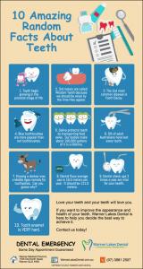 10 Fun Random Facts About Teeth