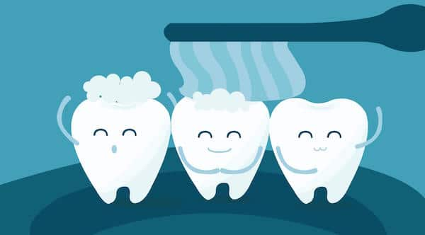 10 Fun Random Facts About Teeth Warner Lakes Dental